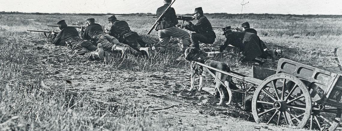 Belgische troepen in stelling